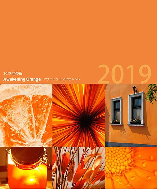 2019年流行色オレンジ